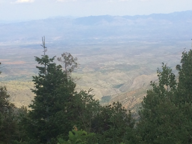 The Scenery of Mt. Lemmon