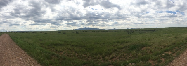Panorama of the Grasslands